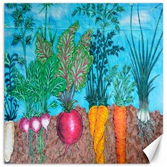 Mural Displaying Array Of Garden Vegetables Canvas 16  X 16   by Simbadda