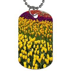 Colorful Tulips In Keukenhof Gardens Wallpaper Dog Tag (two Sides) by Simbadda