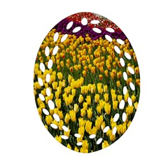 Colorful Tulips In Keukenhof Gardens Wallpaper Oval Filigree Ornament (two Sides) by Simbadda