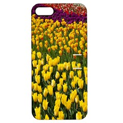 Colorful Tulips In Keukenhof Gardens Wallpaper Apple Iphone 5 Hardshell Case With Stand by Simbadda