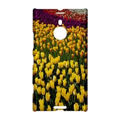 Colorful Tulips In Keukenhof Gardens Wallpaper Nokia Lumia 1520 by Simbadda