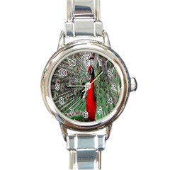 Red Peacock Round Italian Charm Watch by Simbadda