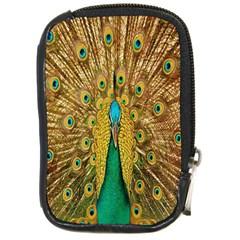 Peacock Bird Feathers Compact Camera Cases by Simbadda