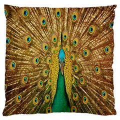 Peacock Bird Feathers Large Cushion Case (two Sides) by Simbadda