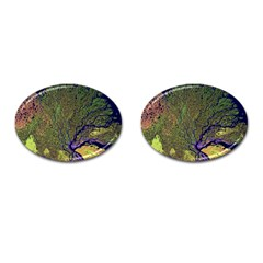 Lena River Delta A Photo Of A Colorful River Delta Taken From A Satellite Cufflinks (oval) by Simbadda