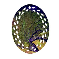 Lena River Delta A Photo Of A Colorful River Delta Taken From A Satellite Ornament (oval Filigree) by Simbadda