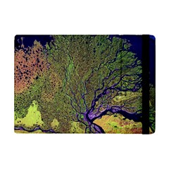 Lena River Delta A Photo Of A Colorful River Delta Taken From A Satellite Ipad Mini 2 Flip Cases by Simbadda