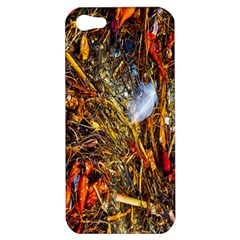 Abstract In Orange Sealife Background Abstract Of Ocean Beach Seaweed And Sand With A White Feather Apple Iphone 5 Hardshell Case by Nexatart
