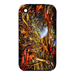 Abstract In Orange Sealife Background Abstract Of Ocean Beach Seaweed And Sand With A White Feather Iphone 3s/3gs by Nexatart