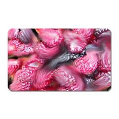 Raspberry Delight Magnet (Rectangular) by Nexatart