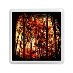 Forest Trees Abstract Memory Card Reader (square)  by Nexatart