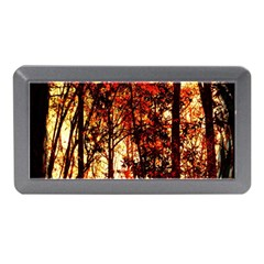 Forest Trees Abstract Memory Card Reader (mini) by Nexatart