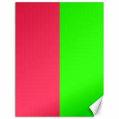 Neon Red Green Canvas 12  X 16   by Jojostore