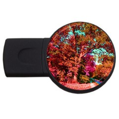 Abstract Fall Trees Saturated With Orange Pink And Turquoise Usb Flash Drive Round (2 Gb) by Nexatart