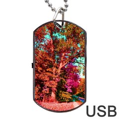 Abstract Fall Trees Saturated With Orange Pink And Turquoise Dog Tag Usb Flash (one Side) by Nexatart