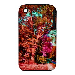 Abstract Fall Trees Saturated With Orange Pink And Turquoise Iphone 3s/3gs by Nexatart