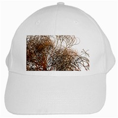 Digitally Painted Colourful Winter Branches Illustration White Cap by Nexatart