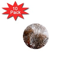 Digitally Painted Colourful Winter Branches Illustration 1  Mini Buttons (10 Pack)  by Nexatart