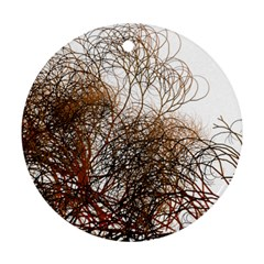 Digitally Painted Colourful Winter Branches Illustration Round Ornament (two Sides) by Nexatart