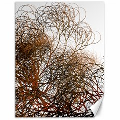 Digitally Painted Colourful Winter Branches Illustration Canvas 12  X 16   by Nexatart