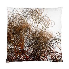 Digitally Painted Colourful Winter Branches Illustration Standard Cushion Case (two Sides) by Nexatart