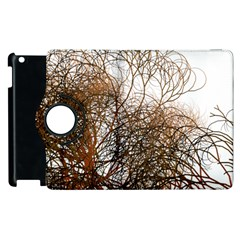 Digitally Painted Colourful Winter Branches Illustration Apple Ipad 2 Flip 360 Case by Nexatart