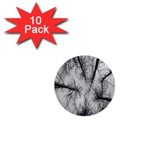 Trees Without Leaves 1  Mini Buttons (10 Pack)  by Nexatart