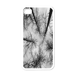 Trees Without Leaves Apple Iphone 4 Case (white) by Nexatart