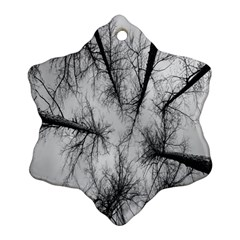 Trees Without Leaves Ornament (snowflake) by Nexatart