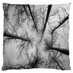 Trees Without Leaves Large Cushion Case (one Side) by Nexatart
