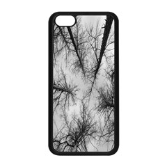 Trees Without Leaves Apple Iphone 5c Seamless Case (black) by Nexatart