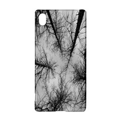 Trees Without Leaves Sony Xperia Z3+ by Nexatart
