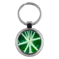 Green Leaf Macro Detail Key Chains (round)  by Nexatart