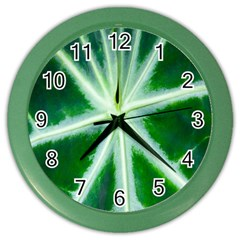Green Leaf Macro Detail Color Wall Clocks by Nexatart