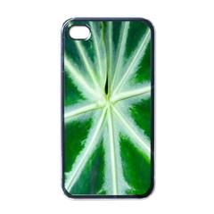 Green Leaf Macro Detail Apple Iphone 4 Case (black) by Nexatart