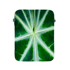 Green Leaf Macro Detail Apple Ipad 2/3/4 Protective Soft Cases by Nexatart