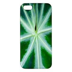 Green Leaf Macro Detail Iphone 5s/ Se Premium Hardshell Case by Nexatart