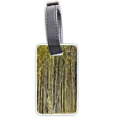 Bamboo Trees Background Luggage Tags (one Side)  by Nexatart