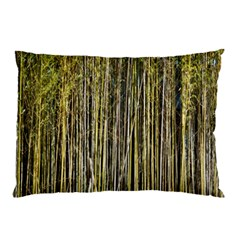 Bamboo Trees Background Pillow Case (two Sides) by Nexatart