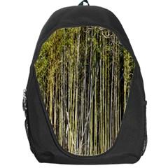Bamboo Trees Background Backpack Bag by Nexatart