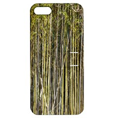 Bamboo Trees Background Apple Iphone 5 Hardshell Case With Stand by Nexatart