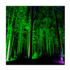 Spooky Forest With Illuminated Trees Tile Coasters by Nexatart