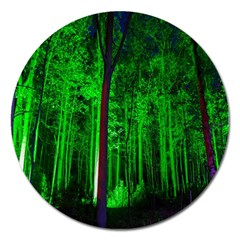 Spooky Forest With Illuminated Trees Magnet 5  (Round)