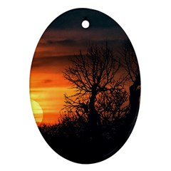 Sunset At Nature Landscape Ornament (oval) by dflcprints