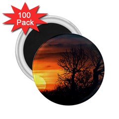 Sunset At Nature Landscape 2 25  Magnets (100 Pack)  by dflcprints