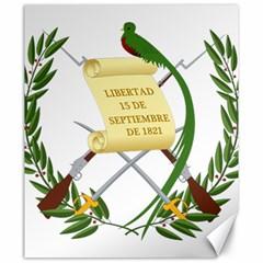 National Emblem Of Guatemala  Canvas 20  X 24   by abbeyz71