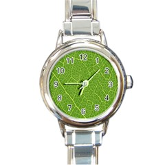 Green Leaf Line Round Italian Charm Watch by Mariart