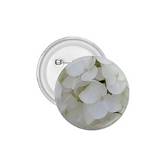 Hydrangea Flowers Blossom White Floral Photography Elegant Bridal Chic  1 75  Buttons by yoursparklingshop