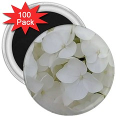Hydrangea Flowers Blossom White Floral Photography Elegant Bridal Chic  3  Magnets (100 Pack) by yoursparklingshop