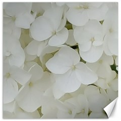 Hydrangea Flowers Blossom White Floral Photography Elegant Bridal Chic  Canvas 16  X 16   by yoursparklingshop